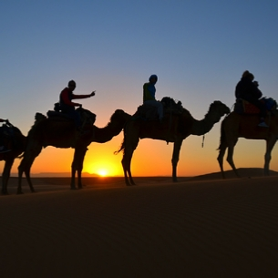 Sunset camel trekking in Merzouga - Camel trip Erg Chebbi sunset trek